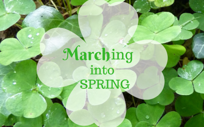 ~ Marching Into Spring ~